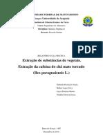 Relatório de Extração de Cafeína - Química Orgânica