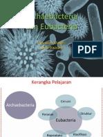 Archaebacteria & Eubacteria