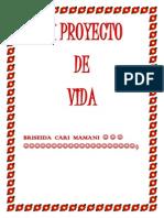 MI PROYECTO.docx