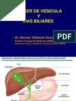 Cancer de Vesicula y Vias Biliares 2012_dr Vildozola
