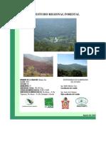 Estudio Forestal Regional de La Mixteca