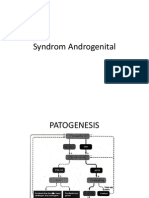 Syndrom Androgenital