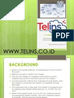 Company Profil Telins