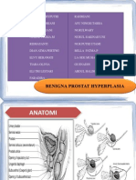 Benigna Prostat Hyperplasia