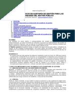 Bases Teóricas de Auditoría de Gestión Para Las Unidades Del Sector Público. Yanelis Guilarte Quevedo