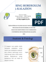 Refreshing Hordeolum & Kalazion
