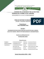These-Doctorat-Regagba (1).pdf