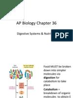 Biology Digestive System Notes