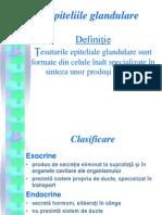 Epiteliile Glandulare.ppt