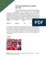 Grupos Étnicos Del Ecuador(Recopilado)