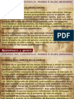 Socialización y Evolución del trabajo PRESENTACION