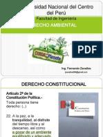 CLASE N 14 Derecho Ambiental