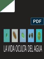 folletooptimizado111111.pdf