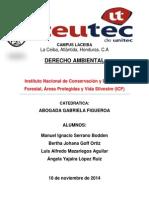 Icf Informe iNSTITUTO DE CONSERVACION FORESTAL.