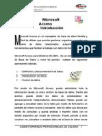 Microsfot Access Xp