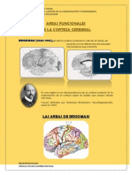 AREAS FUNCIONALES TAREITA.docx