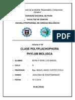 informe 9 inver.docx