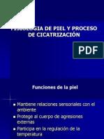 Fisiología de la piel y proceso de cicatrización (1).ppt