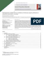 Heterogeneous Catalytic Wet Air Oxidation of Refractory Organic Pollutants In