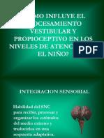 propiocepcion-y-sistema-vestibular-1193500770820258-5.ppt