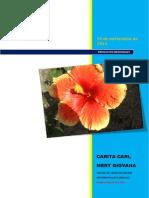 examen de ofimaticaI WORD 2010, WINDOWS 7.docx