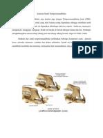 Anatomi Sendi Temporomandibular