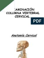 CLASE 3 TEORICO - PRACTICA EVALUACION COLUMNA CERVICAL.pdf