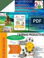 Plan de Negocio-hojuelas de Quinua y Chia Final de Finales
