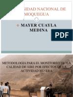 Medio Ambiente Mayer Cuayla Medina