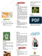 leaflet terapi rematik.doc
