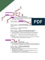 PDF CV Dana Amelrongen