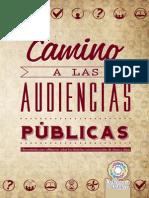 Camino a Las Audiencias Publicas