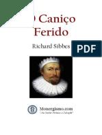 canico-ferido_sibbes
