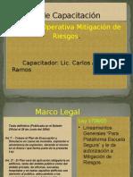 Capacitacion Ley 1346.ppt