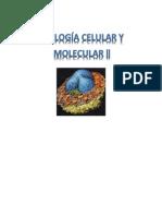 Cuestionario Ciclo Celular