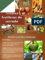 Árvores Frutíferas Do Cerrado