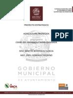 PET Ensenada.pdf
