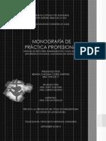 Monografia Práctica Profesional-brenda Flores