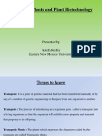 transgenicplantsandplantbiotechnology-131030053841-phpapp02.ppt