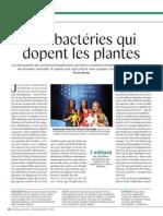 Ces bactéries qui dopent les plantes