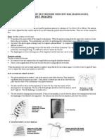 cara baca foto thorax