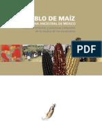 Pueblo Maiz