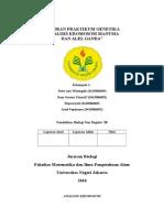 145026922-AKHIR-ANALISIS-KROMOSOM.doc