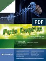 Puls Capital 828