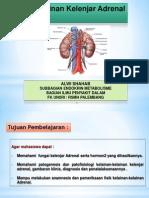 ALW - Kelainan Kelenjar Adrenal
