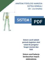 Sistem Saraf3