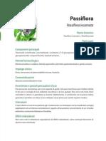 451-passiflora