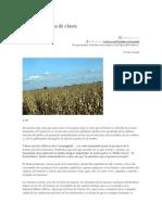 Ecología y Lucha de Clases EL ZENZONTLE en Blogueros Jonada Ote