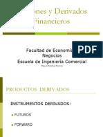 Derivados Financieros (FW- SWAP)