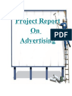 Project Report on Advertising